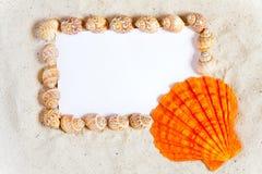 Las conchas marinas enmarcan una tarjeta blanca en blanco Fotografía de archivo libre de regalías