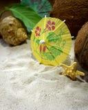 Las conchas marinas, los cocos y los paraguas del cóctel están enmarcando el espacio de la copia en la arena de la playa Imágenes de archivo libres de regalías