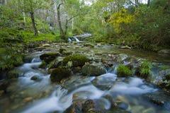 Las corrientes a lo largo de una montaña fluyen en Galicia, España Foto de archivo libre de regalías