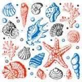 Las cáscaras marinas del mar dan el ejemplo exhausto del vector del bosquejo Fotografía de archivo libre de regalías