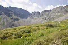 Las cuestas del rango de montaña Foto de archivo libre de regalías