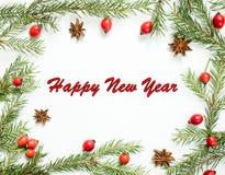 Las decoraciones en un fondo blanco, escaramujos de las bayas, estrellas, abeto de la Navidad ramifican La Feliz Año Nuevo de la  Fotografía de archivo libre de regalías