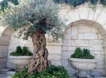 Las decoraciones son similares al estilo griego imagenes de archivo