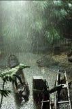 las deszcz Zdjęcie Stock