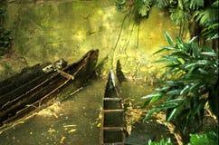 las deszcz Obrazy Royalty Free