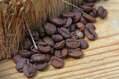 Las diversas clases del primer de granos de café dispersaron en un fondo de madera, espacio vacío para el texto, macro, sistema Imágenes de archivo libres de regalías