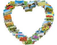 Las diversas fotos de la naturaleza arreglaron en marco del corazón imagen de archivo libre de regalías