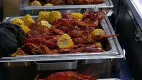Las docenas de cangrejos rojos mienten en las bandejas metálicas con los oídos de maíz al aire libre metrajes