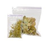 Las dos bolsas de plástico de marijuana medicinal del cáñamo fotos de archivo libres de regalías