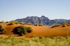 Las dunas anaranjadas con las montañas adentro apoyan, Namibia, África imagen de archivo libre de regalías