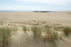 Las dunas de arena del Curonian escupen en el mar Báltico Imagen de archivo
