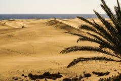 Las Dunas de Maspalomas at Gran Canaria.Europa. Royalty Free Stock Image