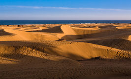 Las dunas de Maspalomas Royalty Free Stock Photo