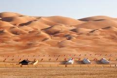 Las dunas de Moreeb en el oasis de Liwa Fotografía de archivo libre de regalías