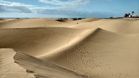Las dunas en Maspalomas Fotos de archivo libres de regalías