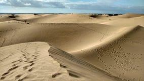 Las dunas en Maspalomas Foto de archivo libre de regalías