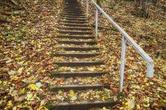 Las escaleras Imagenes de archivo