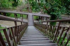 Las escaleras cerca del visitante se centran en la zona de recreo del bosque del Estado de Zhiben, Taiwán Foto de archivo libre de regalías