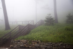 Las escaleras de madera en hierba de niebla cubrieron la colina fotografía de archivo