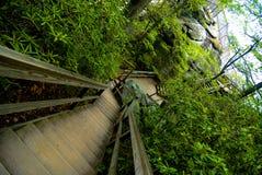 Las escaleras de madera tragan el lado de la roca de la chimenea Imagen de archivo libre de regalías