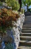 Las escaleras de piedra Fotografía de archivo