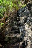 Las escaleras de piedra viejas en la isla Bali van abajo en la roca a la agua de mar y a la cascada de Seganing Foto de archivo libre de regalías