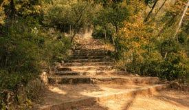 Las escaleras en el parque soleado Imagen de archivo libre de regalías