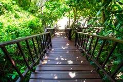 Las escaleras para el paseo abajo a la playa Fotografía de archivo