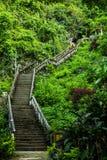 Las escaleras son llevan a la cueva en Vang Vieng, Laos Fotografía de archivo
