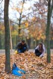 Las escobas de la limpieza de la escoba se colocan en un parque cerca de un árbol Imágenes de archivo libres de regalías