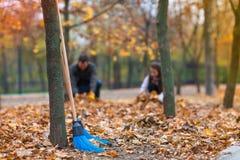 Las escobas de la limpieza de la escoba se colocan en un parque cerca de un árbol Imagen de archivo libre de regalías