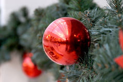 Las esferas del Año Nuevo en ramas del abeto Foto de archivo