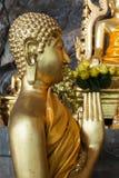 Las estatuas de Buda en el tigre excavan el templo cerca del krabi, Tailandia Imagen de archivo