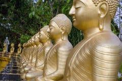 Las estatuas de oro de Buda se colocan en fila uno tras otro Buda foto de archivo