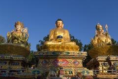 Las estatuas de oro en Amideva Buda parquean, Katmandu Fotos de archivo libres de regalías