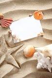 Las estrellas de mar del verano del espacio en blanco de Copyspace enarenan shelles Imagenes de archivo
