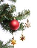 Las estrellas rojas de la bola y del oro en el árbol de navidad ramifican Imagenes de archivo