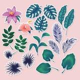 Las etiquetas engomadas y las etiquetas tropicales lindas encendido se ruborizan fondo rosado Sistema del verano de hojas y de fl libre illustration