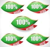 Las etiquetas verdes de la hoja de los productos naturales del 100% - vector eps10 Foto de archivo libre de regalías