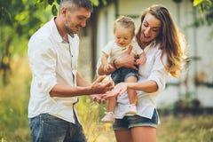 Las familias con un niño en el verano cultivan un huerto fotografía de archivo libre de regalías