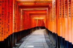 Las filas de las puertas de Torii llevan a la colina en la capilla de Fushimi Inari, Kyoto Japón foto de archivo libre de regalías