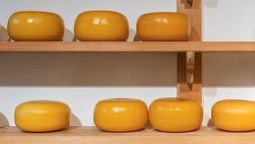 Las filas del queso juntan las piezas en estantes de madera en tienda o en la f?brica de la leche fotografía de archivo libre de regalías