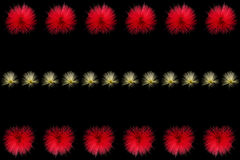 Las filas del soplo de polvo rojo y amarillo florecen Imagen de archivo libre de regalías