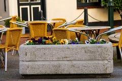 Las flores adornan el café al aire libre en la ciudad holandesa Imagenes de archivo