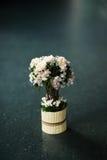 Las flores agradables imagen de archivo libre de regalías