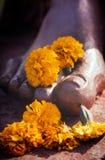 Flores en los pies Imagen de archivo libre de regalías