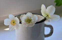 Las flores blancas con un centro amarillo en el hierro circundan En el travesaño de la ventana Foto de archivo libre de regalías