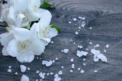 Las flores blancas del jazmín y las hojas verdes mienten en un fondo de madera Hay un lugar para su texto fotografía de archivo