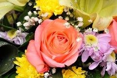 Las flores coloridas, anaranjadas, rojas, púrpuras, verdes se adoptan como regalo de boda Imagen de archivo