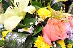 Las flores coloridas, anaranjadas, rojas, púrpuras, verdes se adoptan como regalo de boda Imágenes de archivo libres de regalías